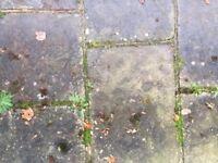 used yorkstone paving