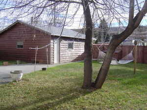 Sunny Bowness 1 BR Basement Suite with Large Yard