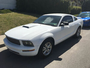 MUST SELL! and MUST BE SEEN! 2005 Ford Mustang