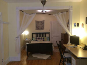 GORGEOUS BRIGHT DOUBLE ROOM ALL INCLUDED- Parc Lafontaine