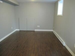Available immediately the Perfect 1 Bedroom in Kenmount Terrace St. John's Newfoundland image 3