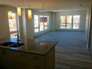 Roomate wanted to share 2 bedrm + den, lrg. new unit Fairview/CP