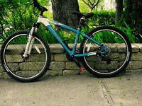 Vélo de montagne TREK