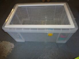 Hamster / Gerbil Cages and Accessories