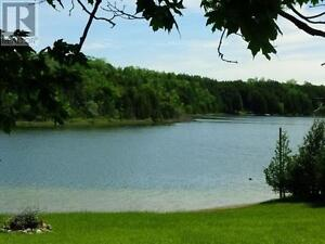 A Tranquil Oasis minutes from Lucknow Kitchener / Waterloo Kitchener Area image 7