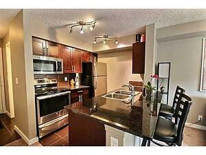 1 BED + DEN Beautiful Condo in Rutherford (April 1)