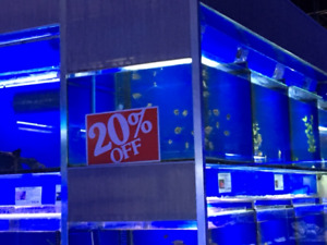 Aquagiant new fish arrived March 13 & live stock 20% off this we