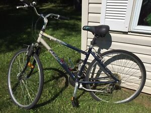 Bicyclette Miele homme