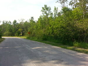 4.7 ACRES IN THE HAMLET OF ROSEDALE Kawartha Lakes Peterborough Area image 3