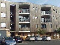 HOMESWAP ONLY - Two Double Bedroom Ground Floor Flat with Garden in Beckenham - three bed required