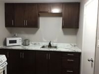 1 bedroom  furnished bsmt apartment