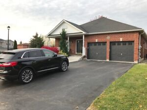 Large executive bungalow for rent