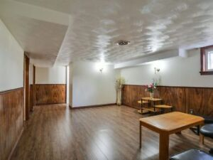 Fully Renovated 1 Bedroom Basement Queen/Kennedy Hwy 410