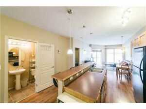 2 Bed/2 Bath Downtown Apartment Available for Rent April 1