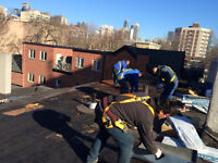 Shingle Roofing / Flat Roofing (Residential / Comercial)