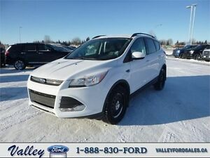 """""""SIPS FUEL & GUSHES TECHNOLOGY"""" 2014 Ford Escape SE 4WD"""