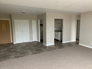 NEWLY RENOVATED 2-BDR APARTMENTS AVAILABLE