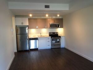 Close to U of M One Bed Room Luxury Condos for Rent!