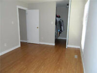 Very Nice room for rent