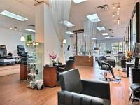 Coiffure Champagne & Élegance (Abordable & Chic)