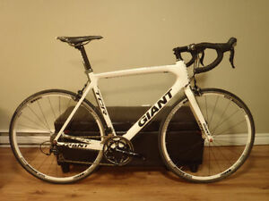 Giant TCR Advanced 2 large
