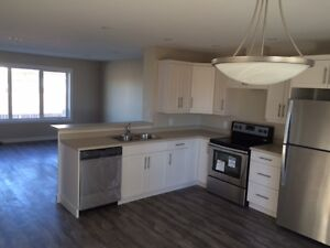 Rent a NEW Townhouse in South Winnipeg