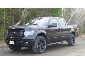 2014 Ford F-150 FX4 (Apperance Package)
