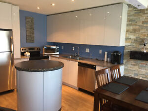 MODERN FURNISHED TOWNHOUSE FOR RENT - great location