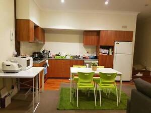 Looking for female, New flat right next to Broadway Ultimo Inner Sydney Preview