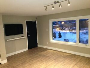 6 bedroom, newly renovated house on Bronson!!!