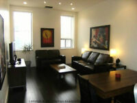 Gorgeous Fully Renovated Loft Condo in the Heart of Downtown