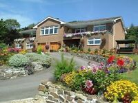 Newquay Selfcatering, Cornwall ~ Half Term late availability