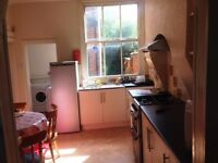 1 large double bedroom available in a large Victorian terrace house, WiFi included