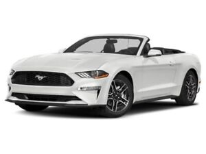 2019 Ford Mustang GT Premium CONVERTIBLE