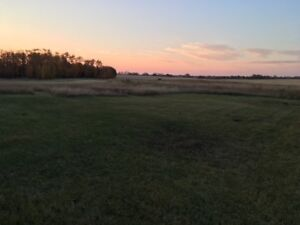 LAND FOR RENT 1 MIN FROM THE TOWN OF BOWDEN OUTDOOR STORAGE