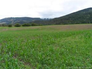 Build Your Own Home, Great Land on 62 Acres