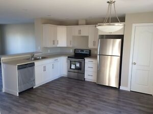 Rent A New 2 Storey Open Concept Townhouse Available Now