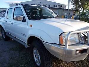 2004 Nissan Navara Ute Mount Louisa Townsville City Preview