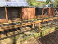Large chicken coop/run - Free.