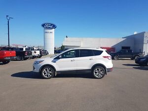 2014 Ford Escape TITANIUM, LEATHER, NAVIGATION, MOONROOF