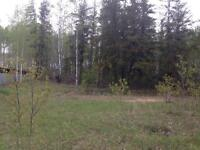River View Lot for Sale