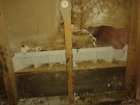 Invisible repairs by experienced framer/drywaller/taper/finisher