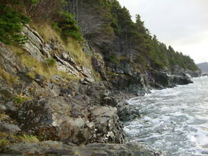 Ocean front property in Holyrood St. John's Newfoundland image 4