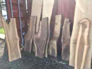 BEAUTIFUL LIVE EDGE!!! VARIETY OF SPECIES! London Ontario image 5