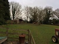 PADDOCK & STABLES AVAILABLE FOR RENT IN BARKHAM