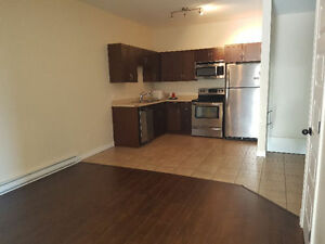 Large triplex - Walking distance from U de M