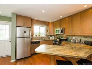 Beautiful 2 bedroom townhouse apartment 1-191 Horace (Norwood)