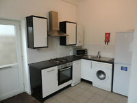 Miskin Street, Cathays, Modern 1 bedroom ground floor flat! Ideal for students!