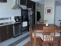 Furnished Suite 10040 - 114 Street