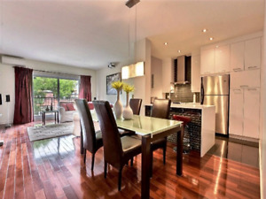 Condo 1250 sq ft HUGE! Plateau Parking int. Furnished Meuble MUS